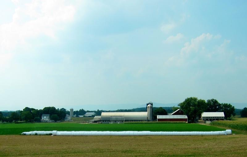 farm/agriculture sector