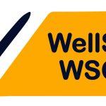 Introducing the WellSAT WSCC Tool