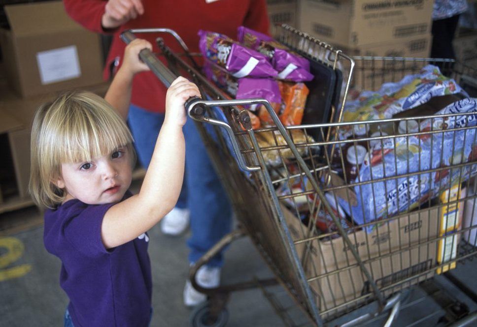 white toddler girl with blonde hair in purple shirt pushing grocery cart