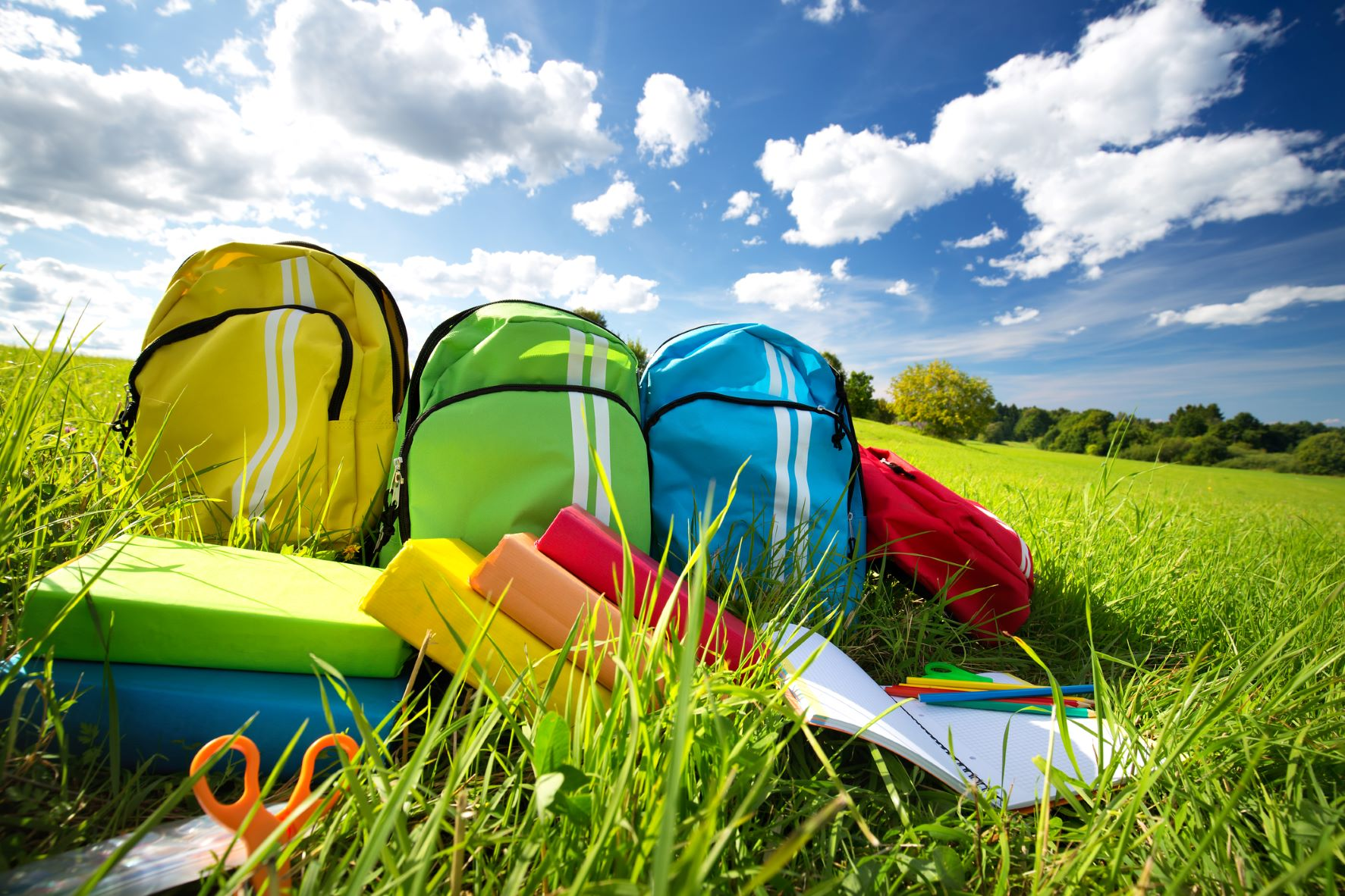 Colorful children schoolbags outdoors on a grassy field with colorfully bound books in the foreground